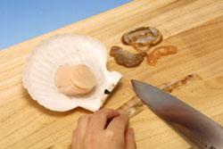 ほたて貝の開き方:その4